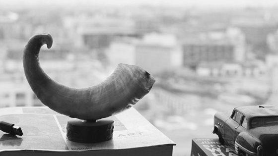 horn-still-live-window-view-648x648-lindenpartners-Berlin